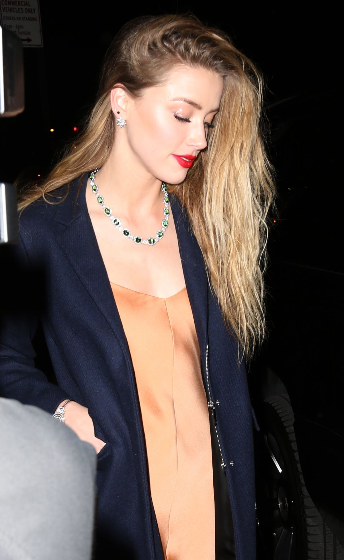 AMBER HEARD at Tiffany Blue Book Dinner in New York