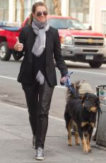 BROOKE SHIELDS Wlaks Her Dog Out in New York