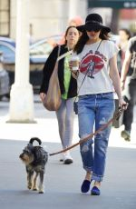 DAKOTA JOHNSON in Ripped Jeans Walks Her Dog in New York