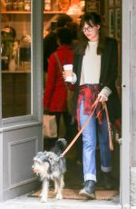 DAKOTA JOHNSON Out and About in New York with Her Dog