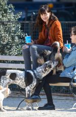 DAKOTA JOHNSON Out with Her Dog at a Park in New York
