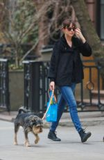 DAKOTA JOHNSON Walks Her Dog Out in Bew York
