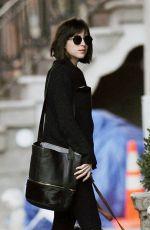 DAKOTA JOHNSON Walks Her Dog Out in Manhattan