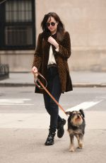 DAKOTA JOHNSON Walks Her Dog Out in New York