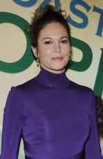 DIANE LANE at The Mystery of Love and Sex Opening Night in New York
