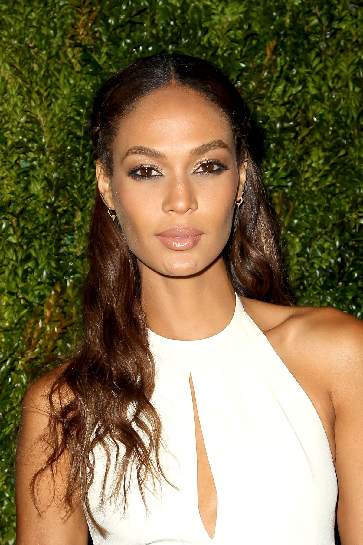 JOAN SMALLS at Chanel Dinner at Tribeca Film Festival in New York