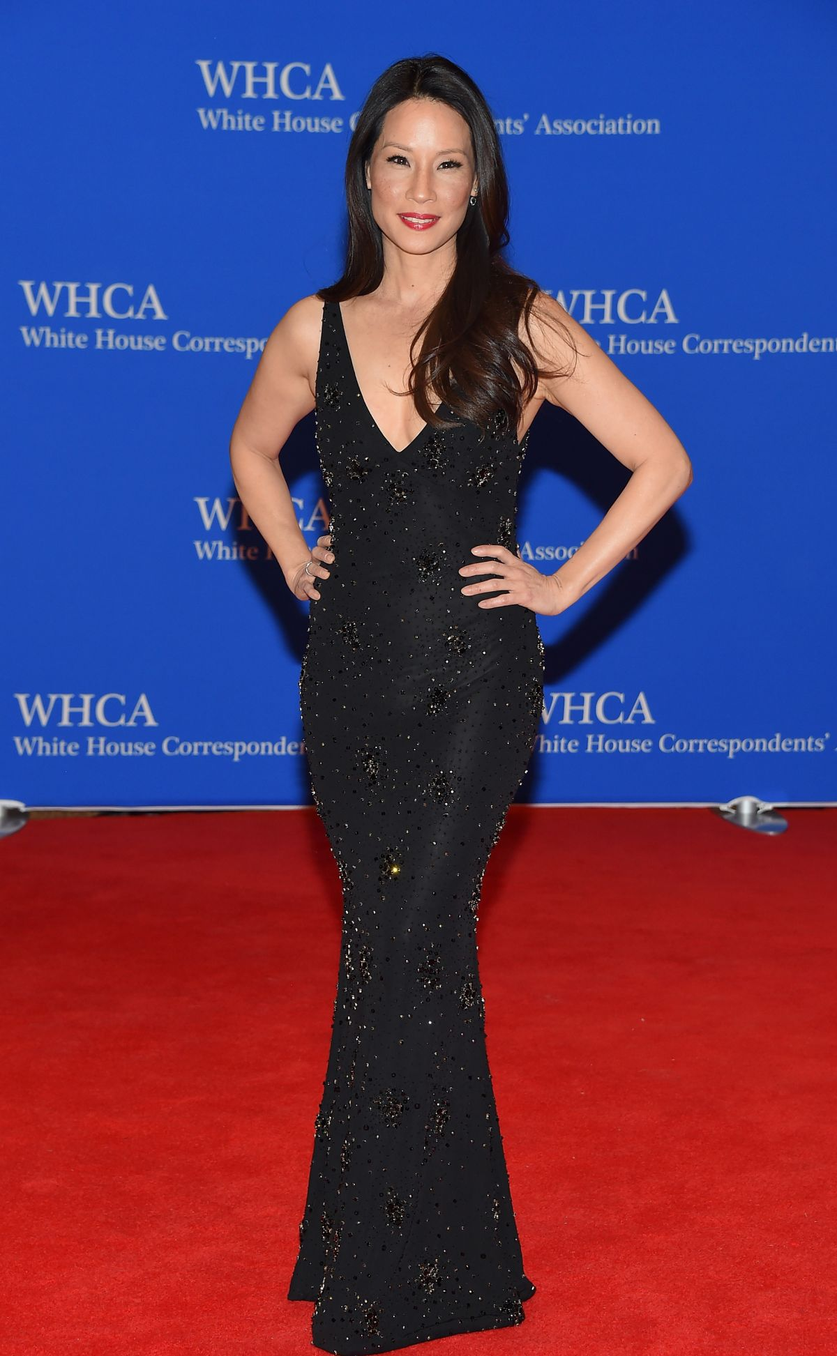 LUCY LIU at White House Correspondents Association Dinner in Washington