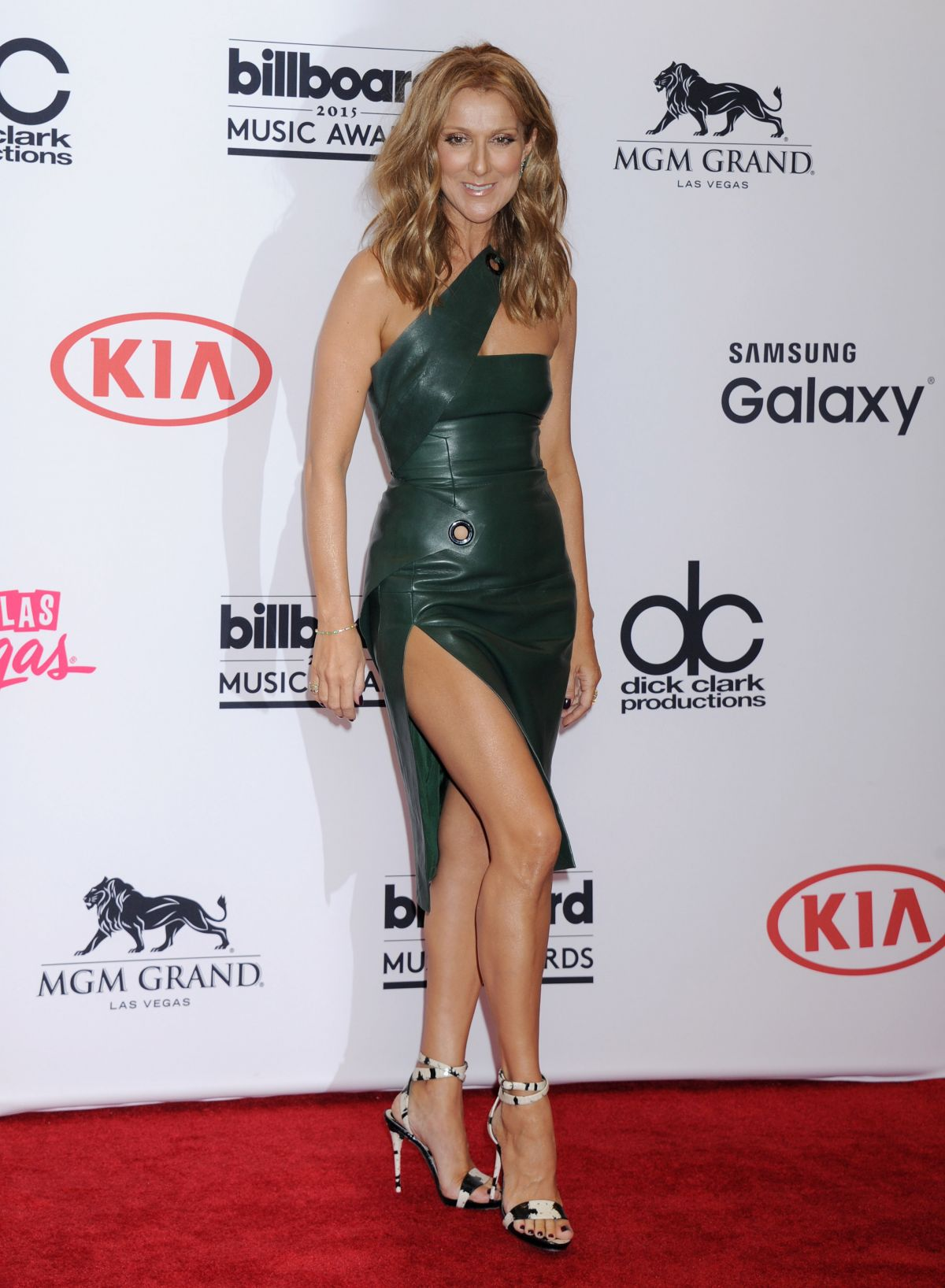 CELINE DION at 2015 Billboard Music Awards in Las Vegas
