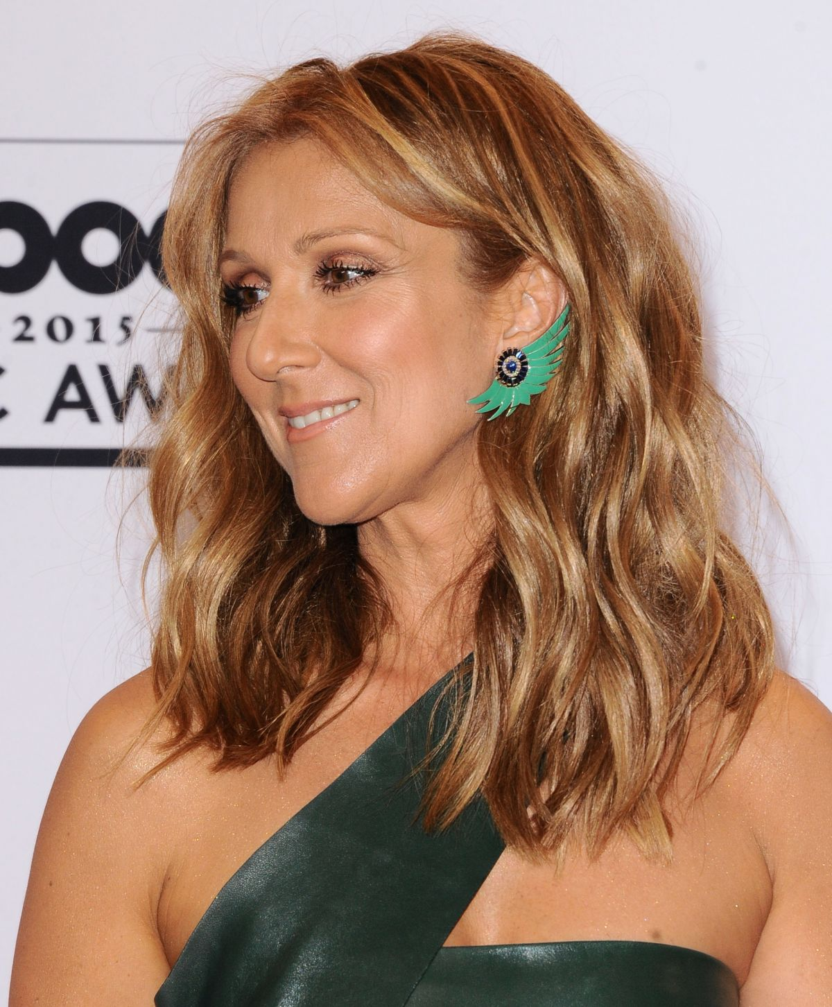 Celine Dion Dropped $2 Million Humidifier for Her Skin