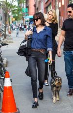 DAKOTA JOHNSON Walks Her Dog Out in New York 05/15/2015