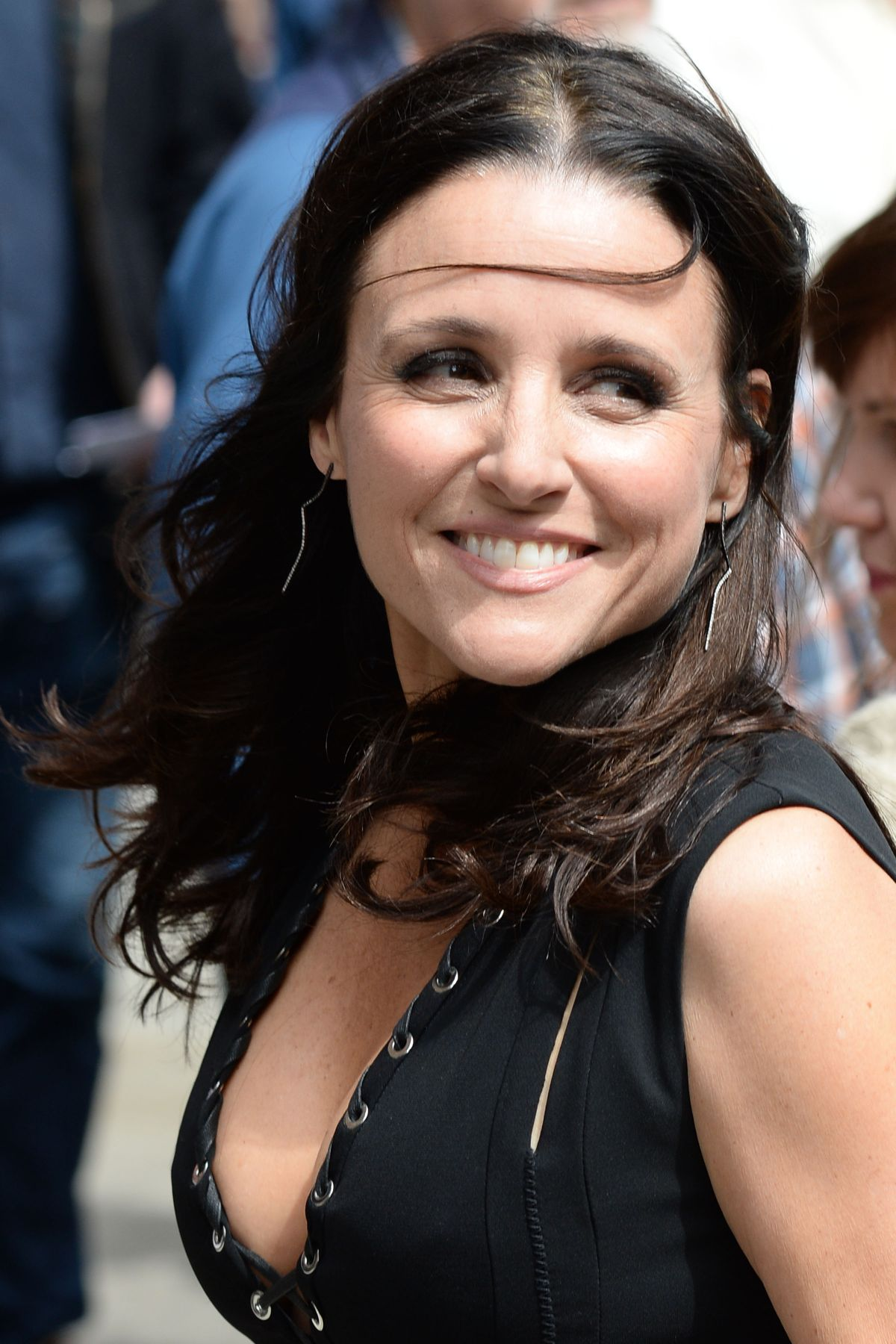 Is a cute Julia Louis-Dreyfus nudes (42 photos), Sexy, Paparazzi, Boobs, see through 2015