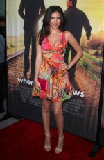 RYAN NEWMAN at Where Hope Grows Premiere in Hollywood