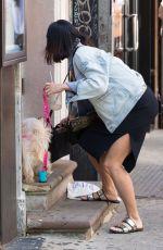 VANESSA HUDGENS Walks Her Dog Out in New York 05/14/2015