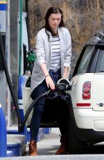 IRELAND BALDWIN at a Gas Station in Calabasas 06/06/2015