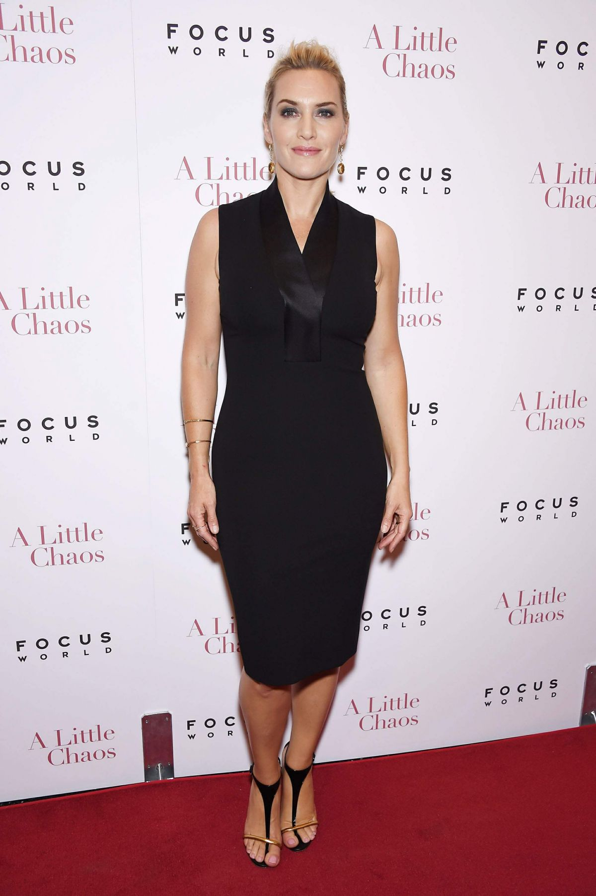 8cbf449c485 KATE WINSLET at Little Chaos Premiere at Museum of Modern Art in New York