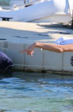 NICOLE SCHERZINGER in Bikini in Mykonos 06/28/2015