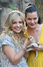 SARAH MICHELLE GELLAR At Glaza 45th Annual Beastly Ball at the Los Angeles Zoo
