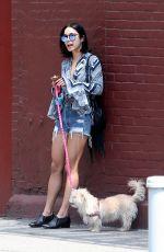 VANESSA HUDGENS Walks Her Dog Out in New York 06/14/2015