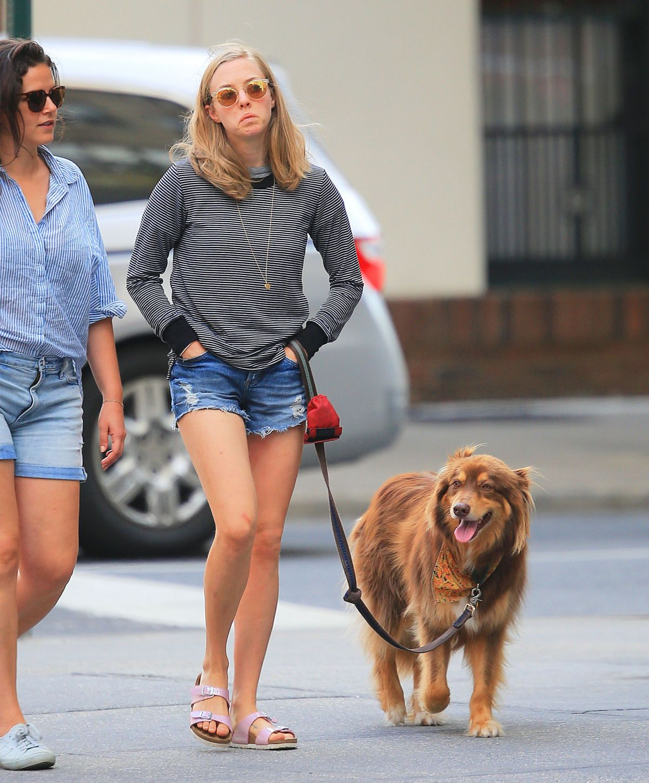 Amanda Seyfried Finn Dog Elle Uk