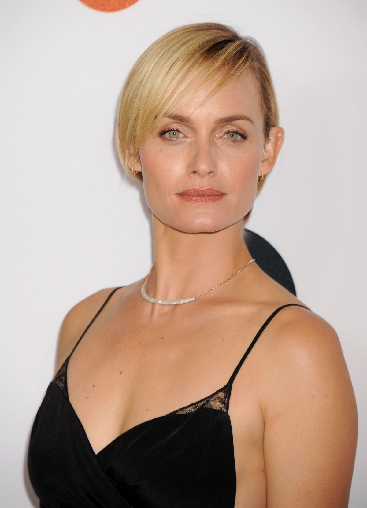 AMBER VALLETTA at Disney ABC 2015 Summer TCA Tour in Beverly Hills