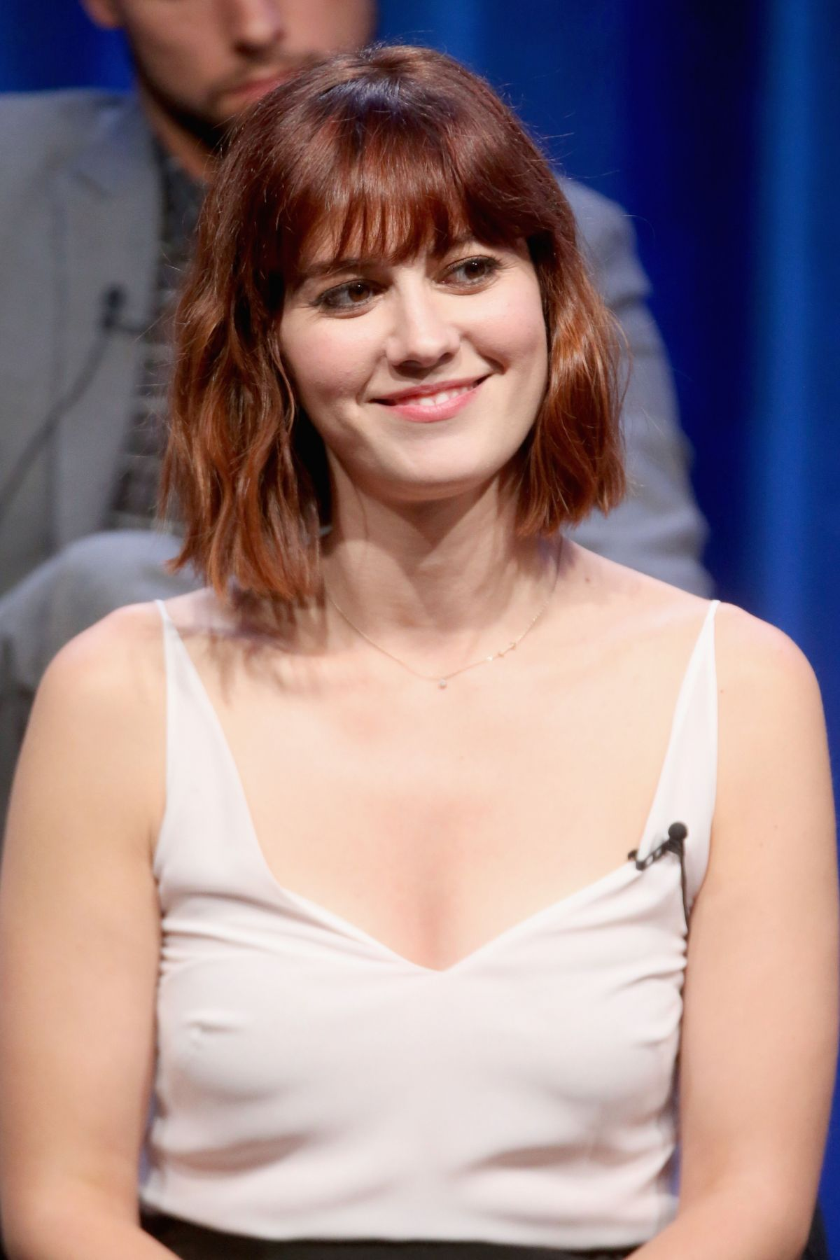 MARY ELIZABETH WINSTEAD at Mercy Street Panel at Summer TCA Tour in Beverly Hills
