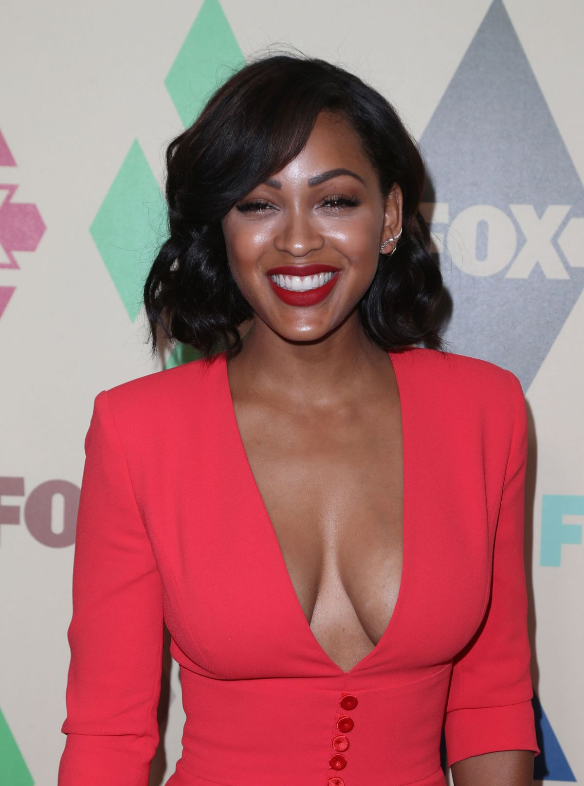 MEAGAN GOOD at Fox/FX Summer 2015 TCA Party in West ...
