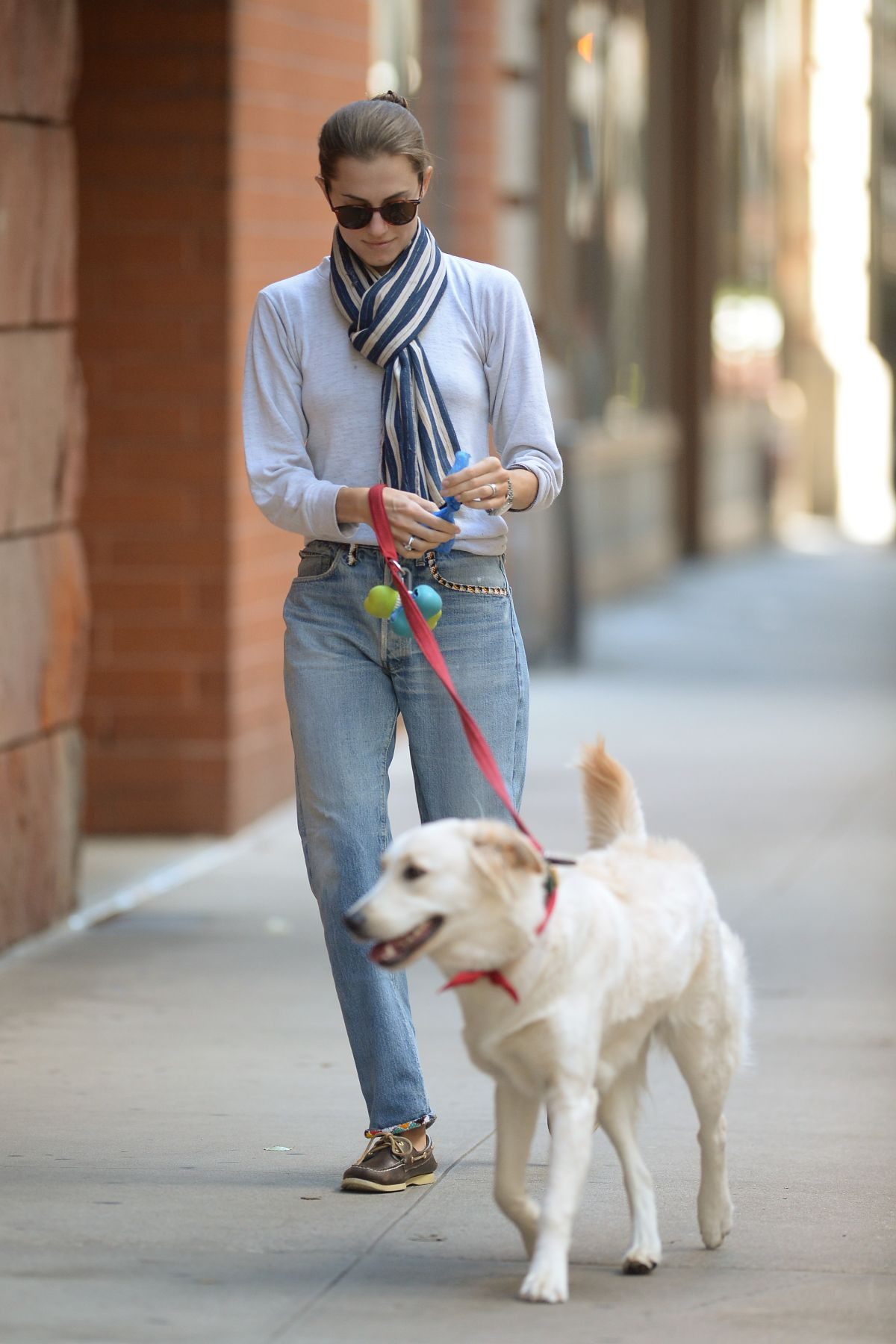 ALLISON WILLIAMS Walks Her Dog Out in New York 10/05/2015