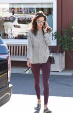 ALESSANDRA AMBROSIO Out and About in Brentwood 11/18/2015