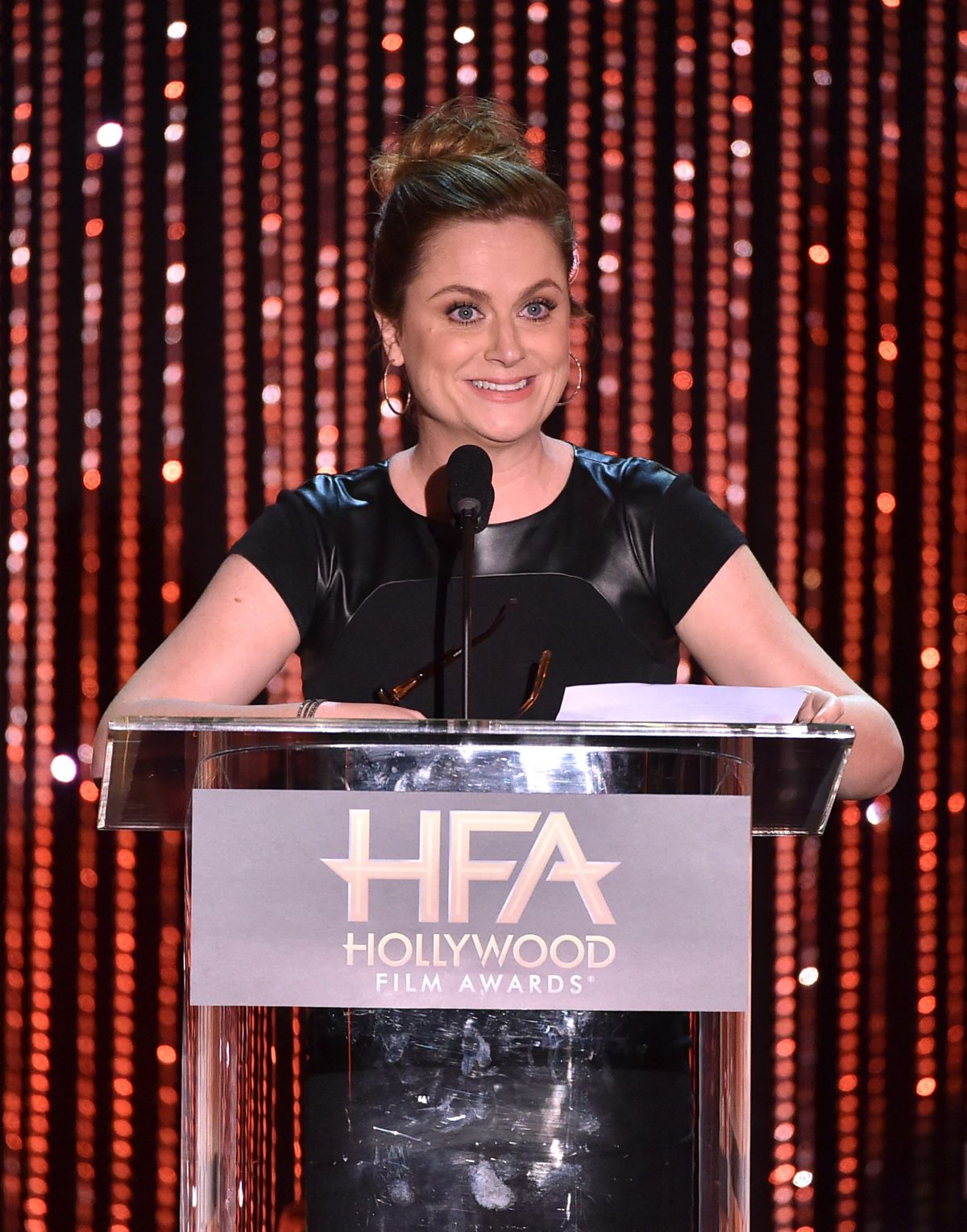 AMY POEHLER at 2015 Hollywood Film Awards in Beverly Hills 11/01/2015