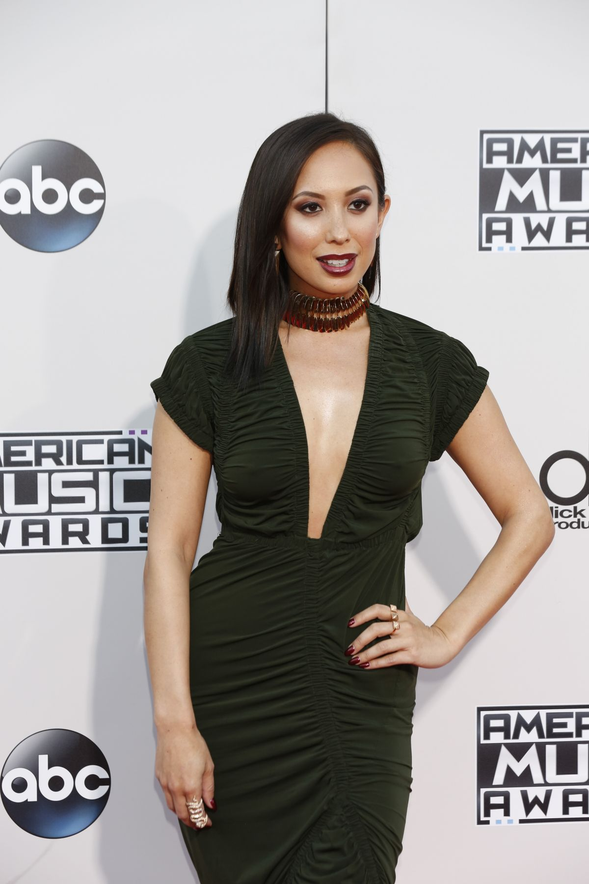 CHERYL BURKE at 2015 American Music Awards in Los Angeles 11/22/2015