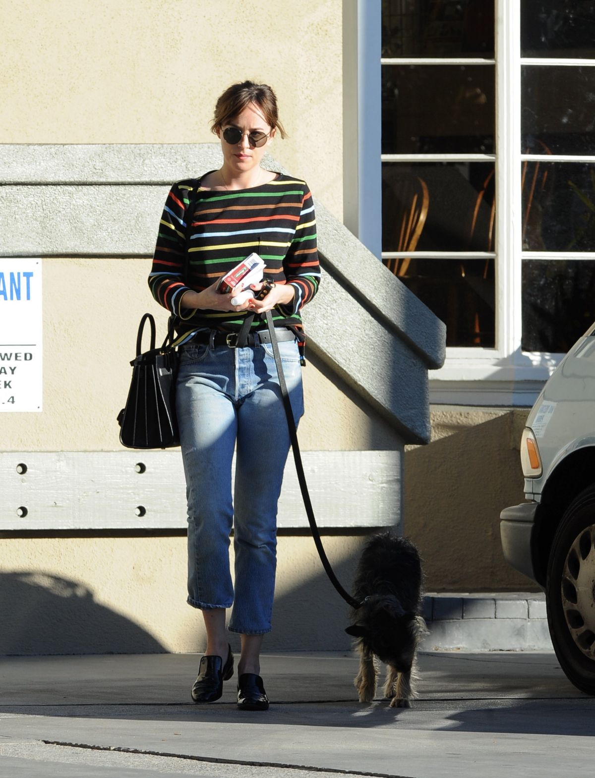DAKOTA JOHNSON Taking Her Dog to Larchmont Animal Clinic in Los Angeles 11/13/2015