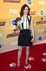 EMMY ROSSUM at All-star Dof Rescue Celebration in Santa Monica 11/21/2015