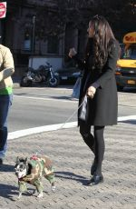 FAMKE JANSSEN Walks Her Dog Out in New York 11/24/2015