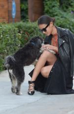 JAMIE CHUNG Walks Her Dog Out in Los Angeles 11/05/2015