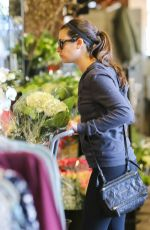 LEA MICHELE Out Shopping in Brentwood 11/29/2015