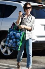 LILY COLLINS Out Shopping in Los Angeles 11/23/2015