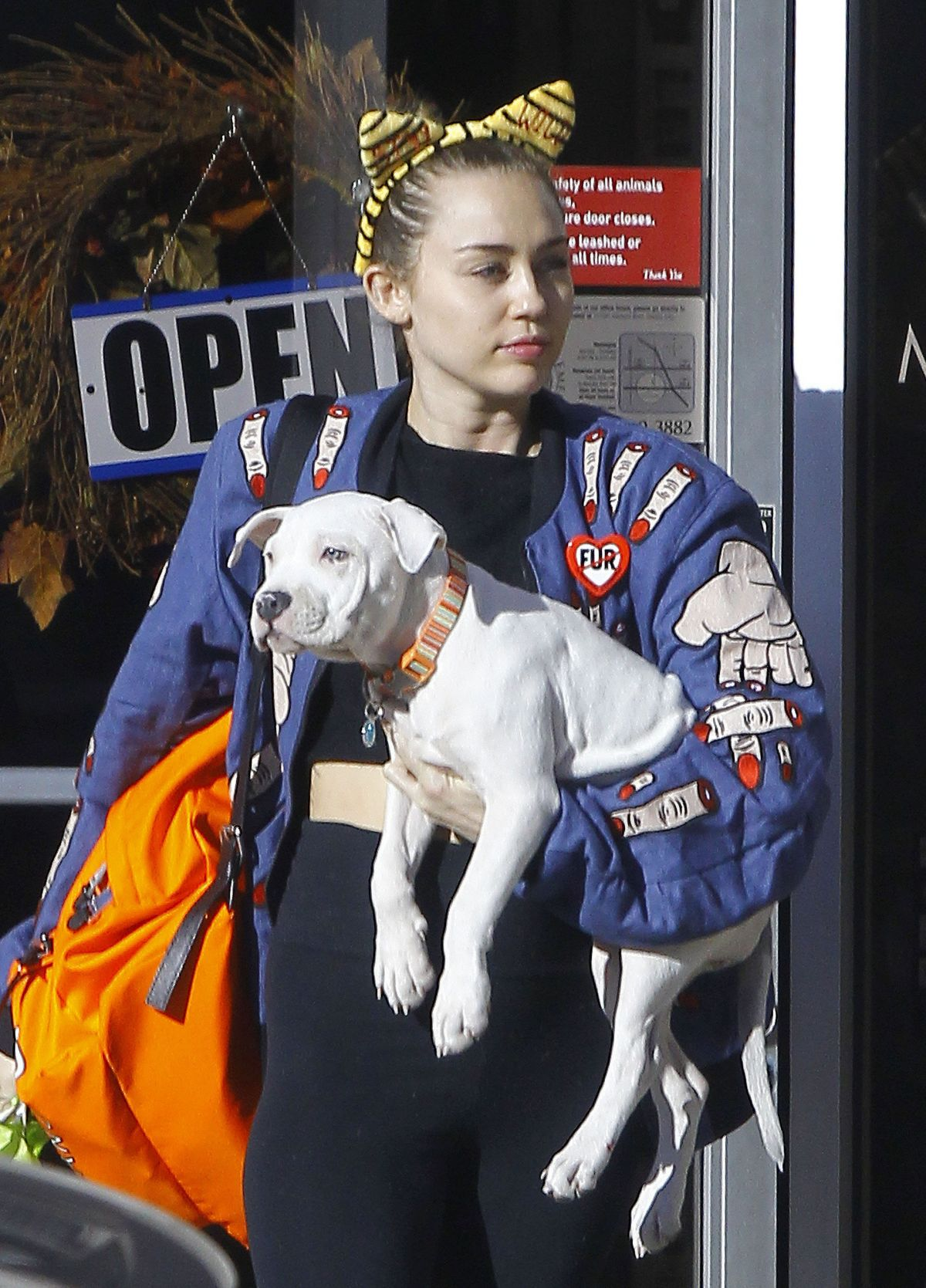 MILEY CYRUS Leaves a Veterinarian Office in Los Angeles 11/10/2015 - superiorpics celebrity forums