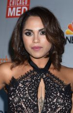 MONICA RAYMUND at Chicago Fire, Chicago P.D. and Chicago Med Premiere in Chicago 11/09/2015