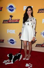 OLIVIA MUNN at All-star Dof Rescue Celebration in Santa Monica 11/21/2015
