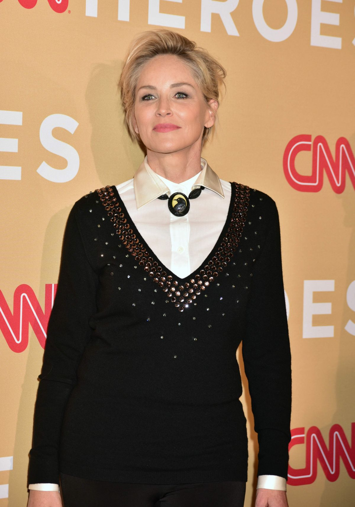 SHARON STONE at CNN Heroes 2015 in New York 11/17/2015