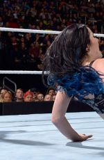 WWE - Survivor Series 2015 Digitals
