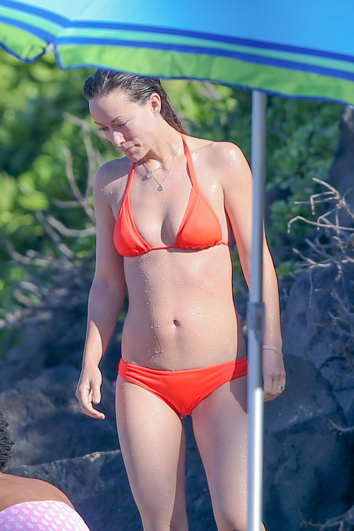 Olivia wilde in bikini at a beach in hawaii 12 12 20154 hawtcelebs full size voltagebd Image collections