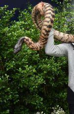 AGNIESZAK RADWANSKA Holding a Python Snake in Melbourne 01/21/2016