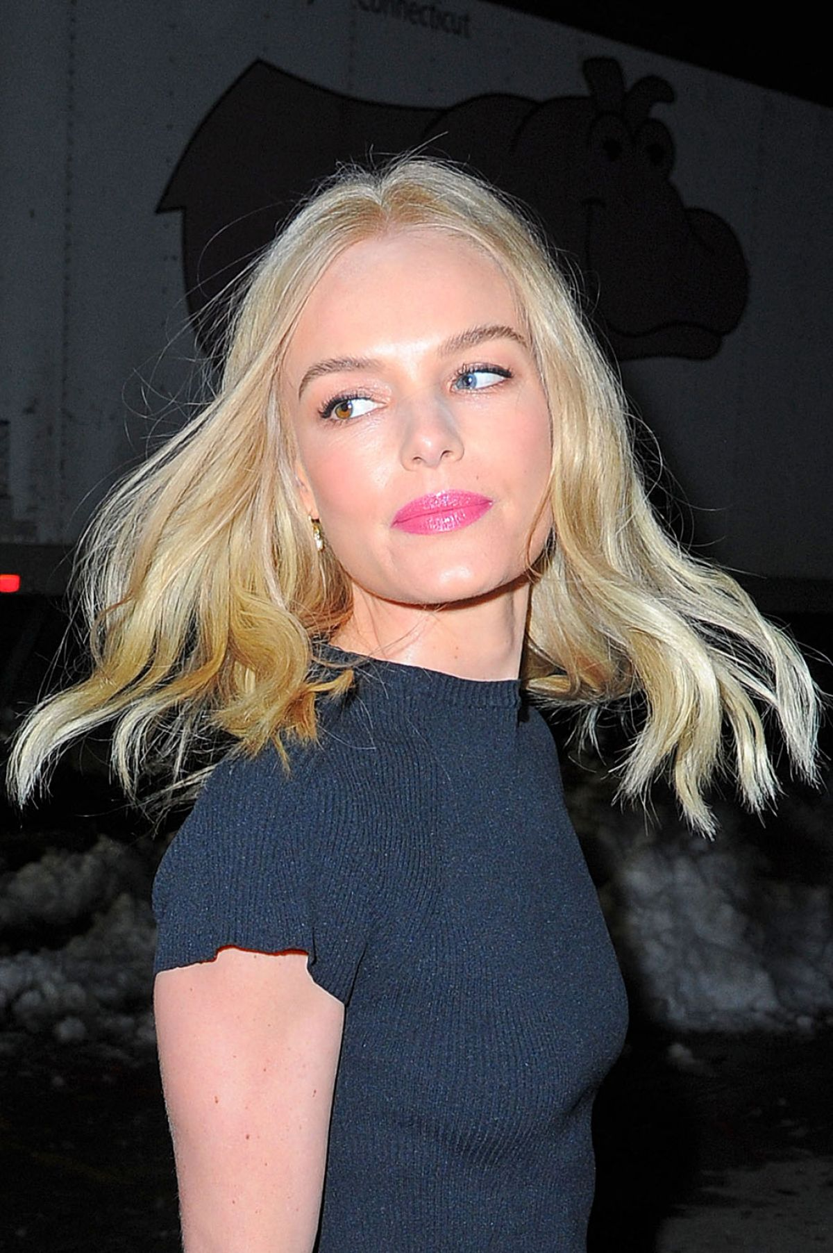 KATE BOSWORTH Night Out in New York 01/27/2016 - HawtCelebs Kate Bosworth