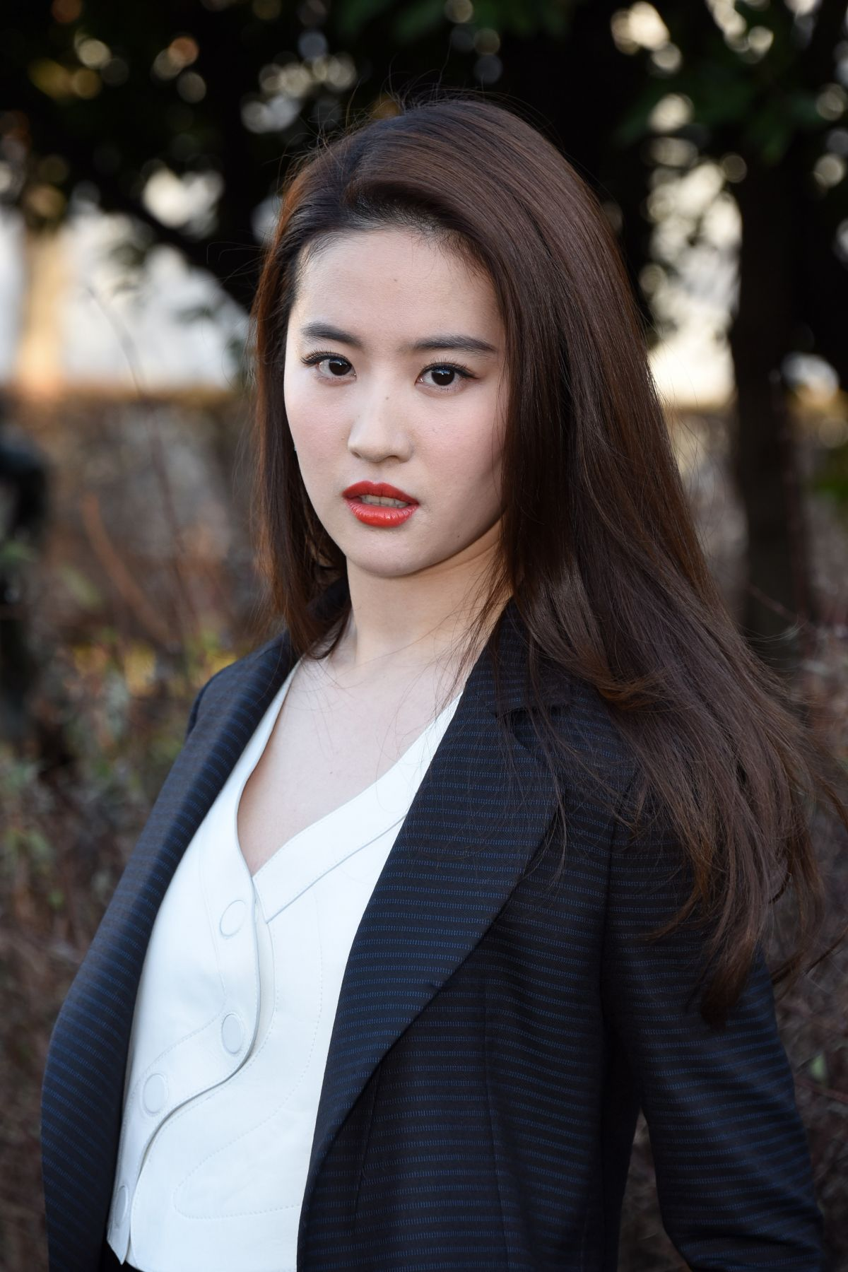 Liu Yifei Net Worth