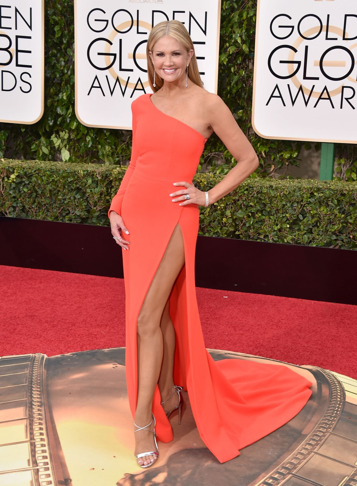 Nancy o dell at 73rd annual golden globe awards in beverly hills 10