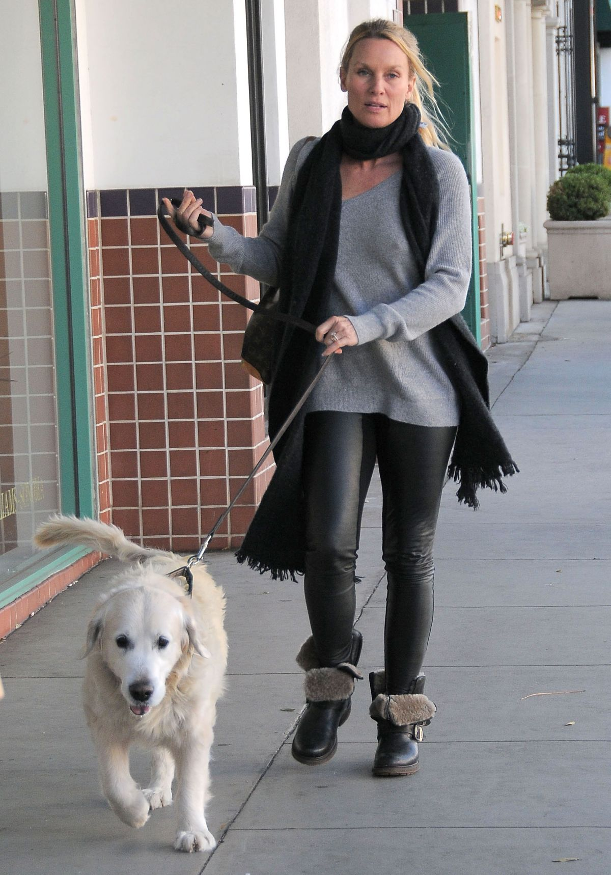 NICOLETTE SHERIDAN Out with Her Dog in Beverly Hills 01/07/2016