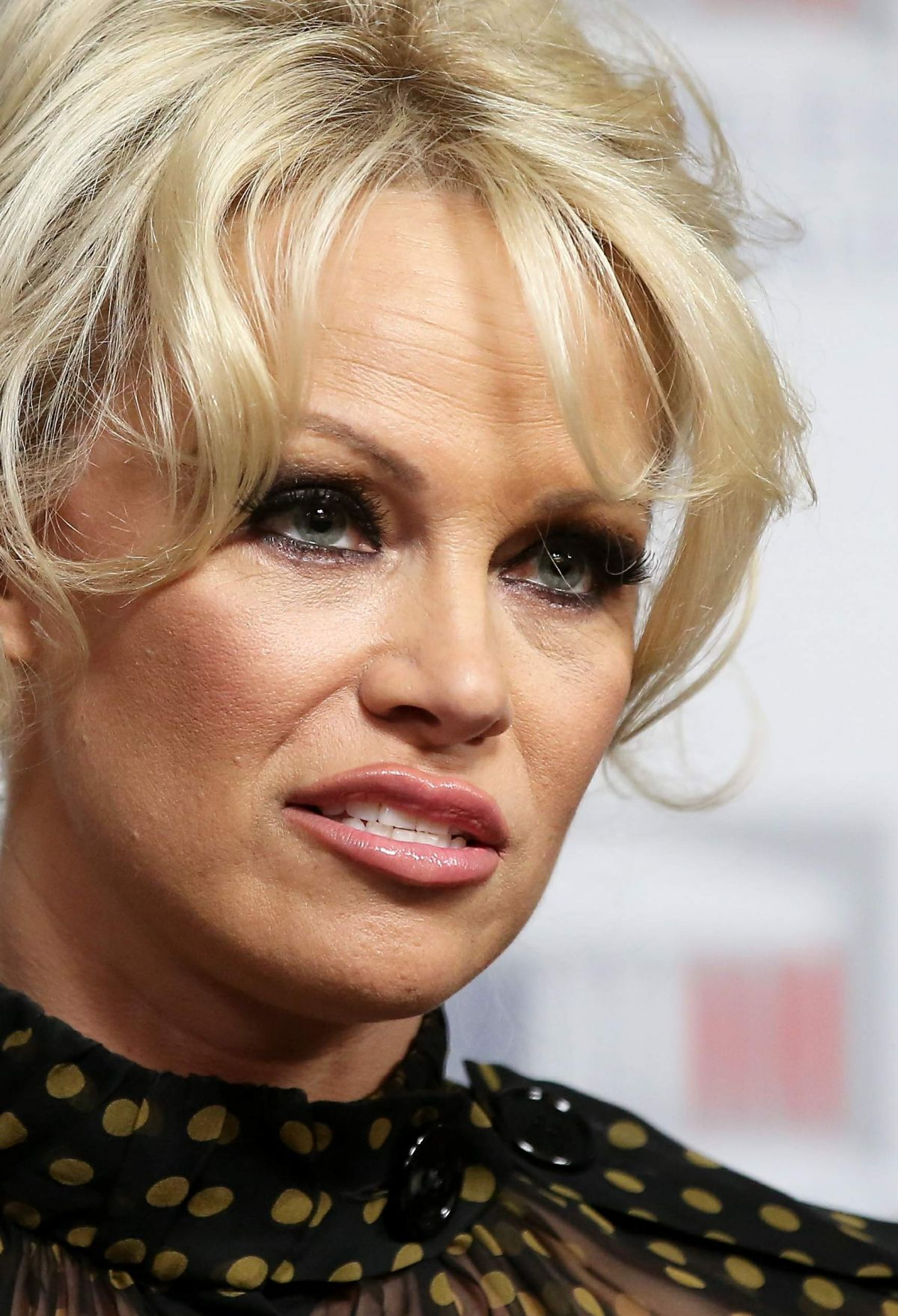 PAMELA ANDERSON at a Press Conference in Paris 01/19/2016