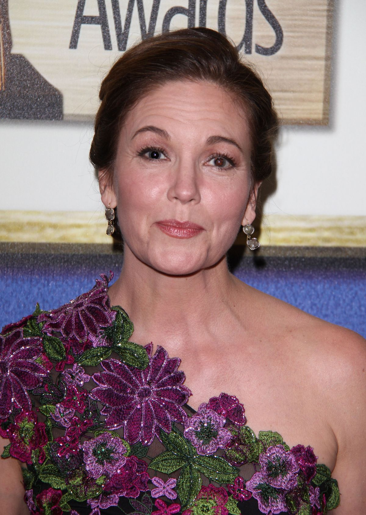 Diane Lane At 68th Annual Writers Guild Awards In New York 0213