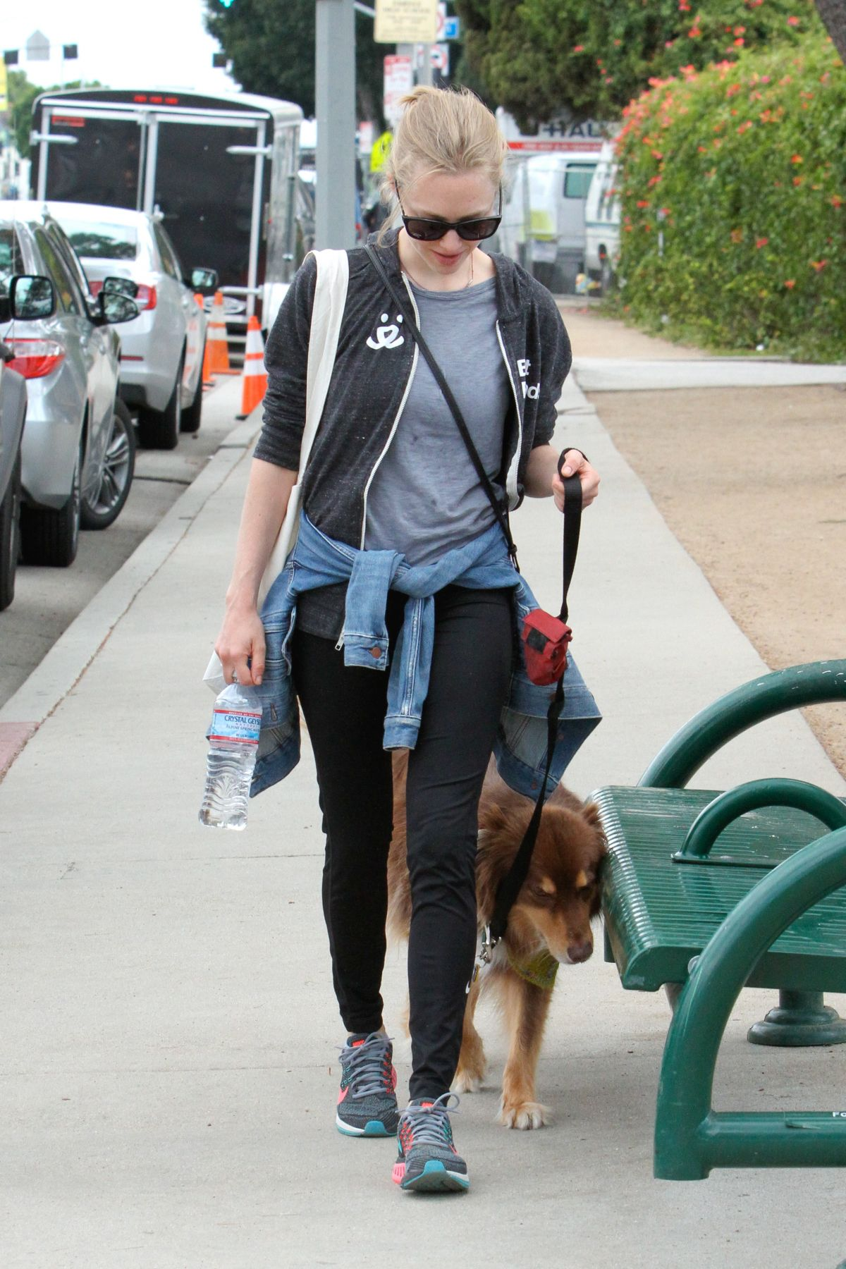 AMANDA SEYFRIED and Finn Out in West Hollywood 04/10/2016